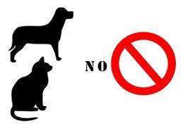 犬猫 禁止